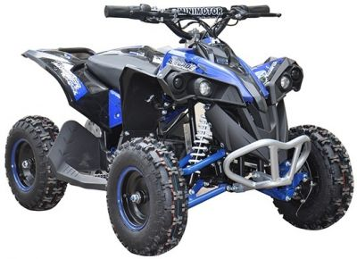 Accu Quad CYCLONE Blauw 1000W 48V