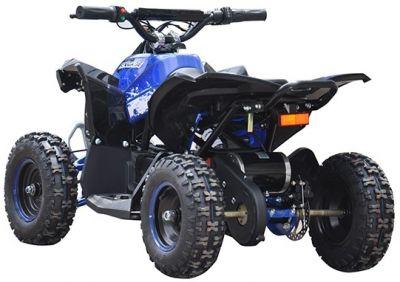 Accu Quad CYCLONE Blauw 1000W 48V -1