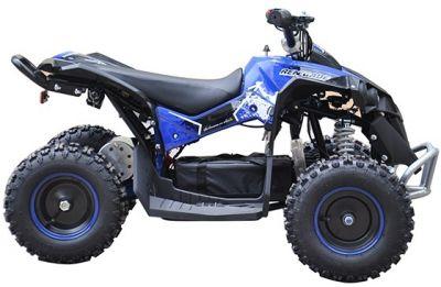 Accu Quad CYCLONE Blauw 1000W 48V -2